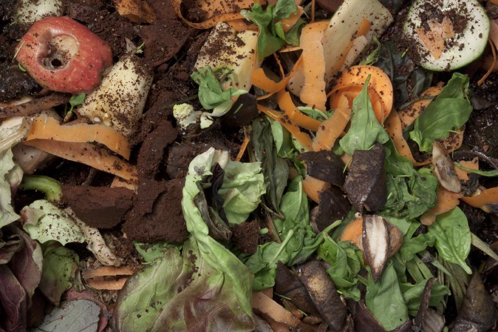 De wormenbak met een verse laag groenten.
